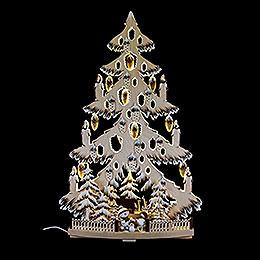 Lichterspitze Tanne mit Zapfen, Schneeb�llchen, Raureif  -  38x72cm